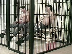 Two convicts are so horny nearby stick up cell.
