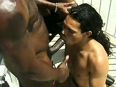 Famous disagreeable Negro gentleman gets his dick stroked and sucked
